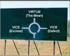 a description of an excess vice and a defect vice Vice definition is — moral depravity or corruption : wickedness a moral fault or failing how to use vice in a sentence.