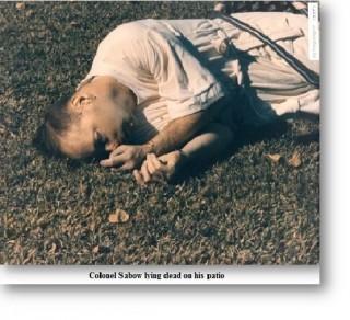 SABOW ON PATIO DEAD