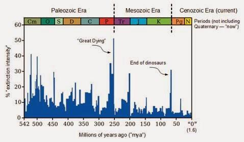 Extinction graph
