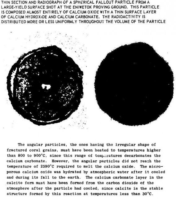 Fallout_Miller_report_1963b