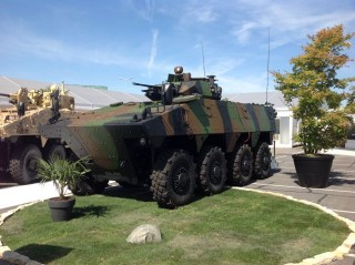 Nexter Vehicle for Sale