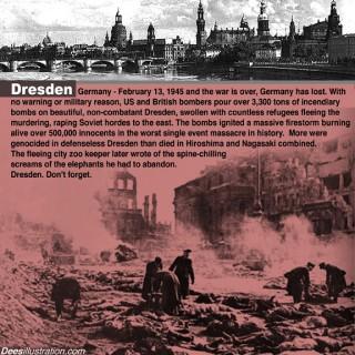 Dresden9