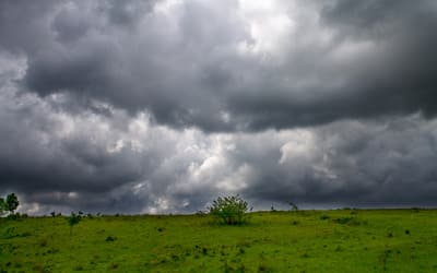 Storm clouds over a meadow
