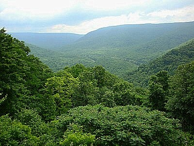 The Allegheny Mountains in Western Pennsylvania