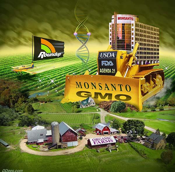 DEES GMO 5