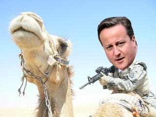 cameron on a camel